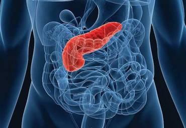 Бионическая поджелудочная железа проходит успешные испытания по контролю уровня сахара